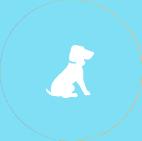 导盲犬网站